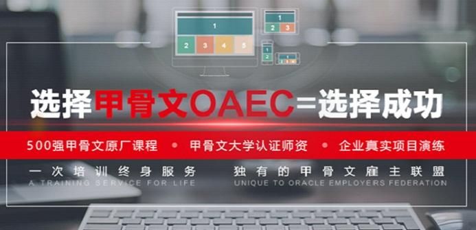 上海甲骨文OAEC IT人才实训基地