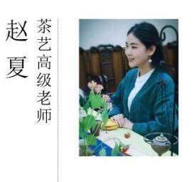 茶艺高级老师-赵夏