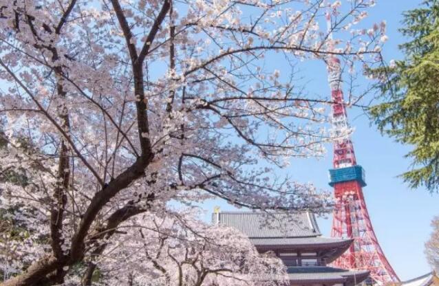 日本留學本科申請