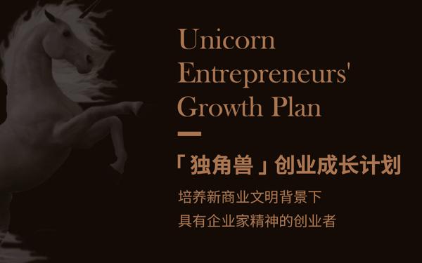 独角兽创业成长计划