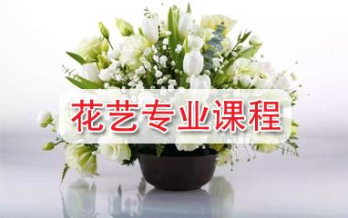 花藝專業課程