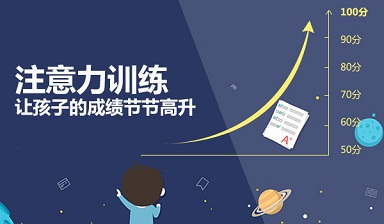 杭州金博智慧训练方案