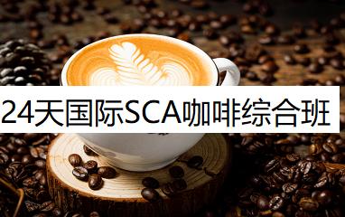 24天国际SCA咖啡综合班