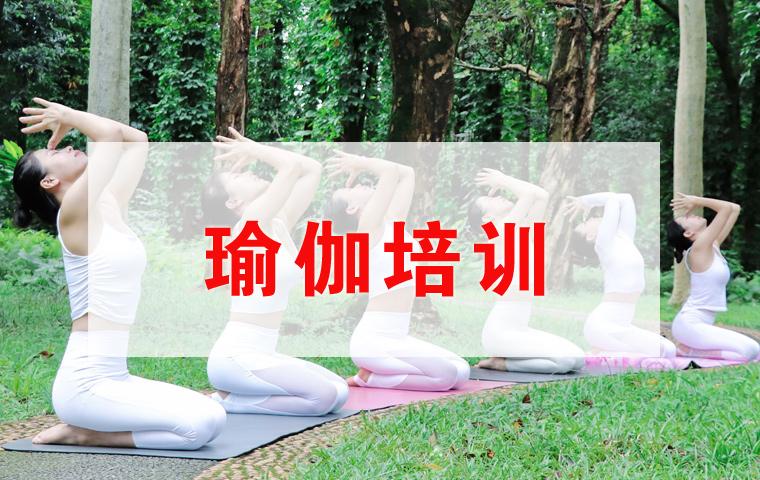 瑜伽教练(精炼班)