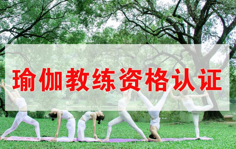 瑜伽教练(认证班)