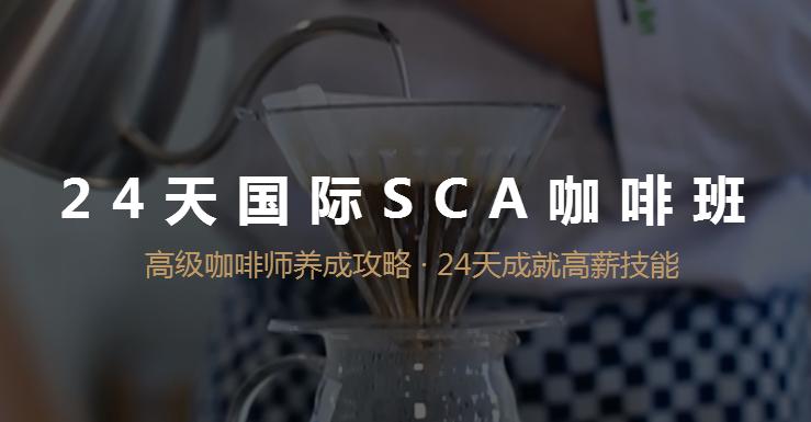 SCA咖啡綜合班