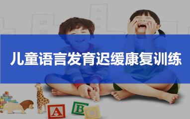 儿童语言发育迟缓康复训练课程