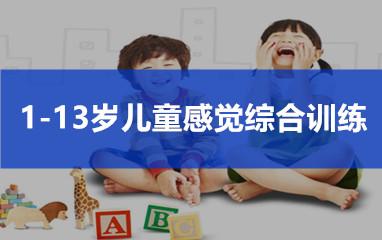 1-13岁儿童感觉统合智能训练