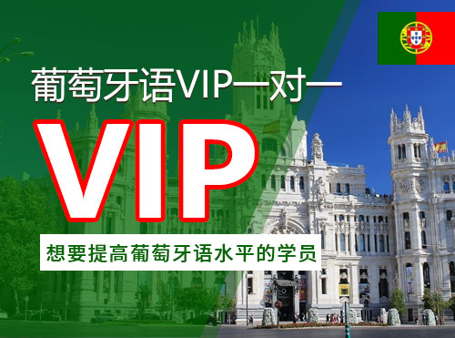葡萄牙语VIP一对一班
