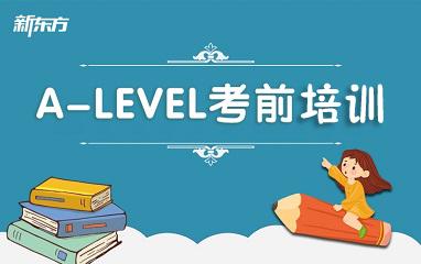 A-level精讲精练班