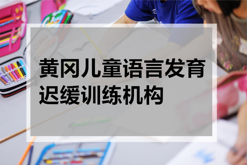 黄冈儿童语言发育迟缓训练班